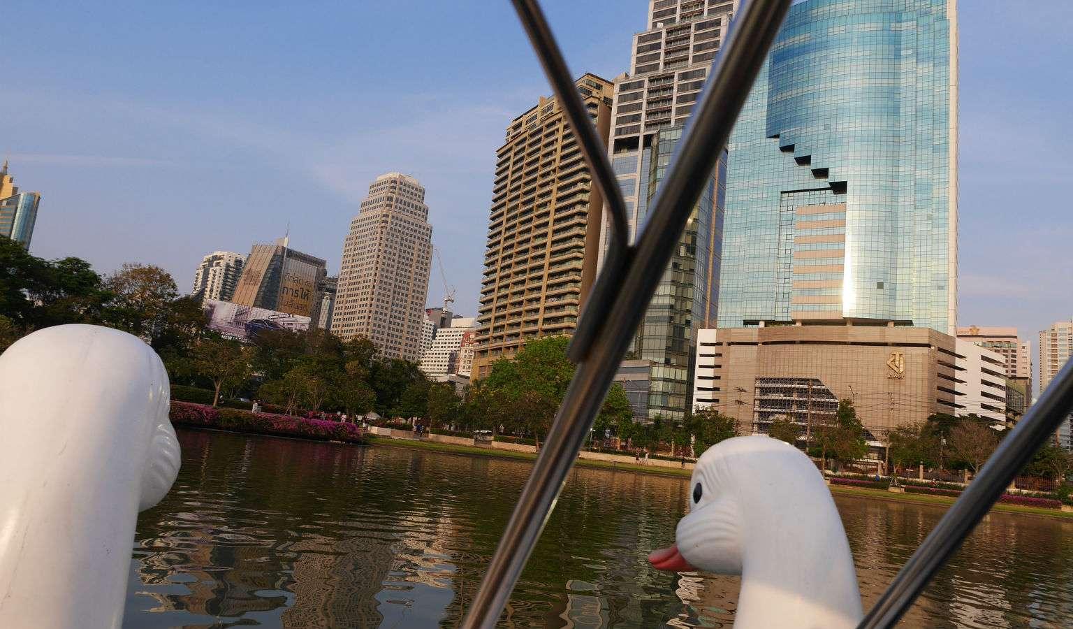 Zwanenbootje op het meer in Benjakitti Park in Bangkok