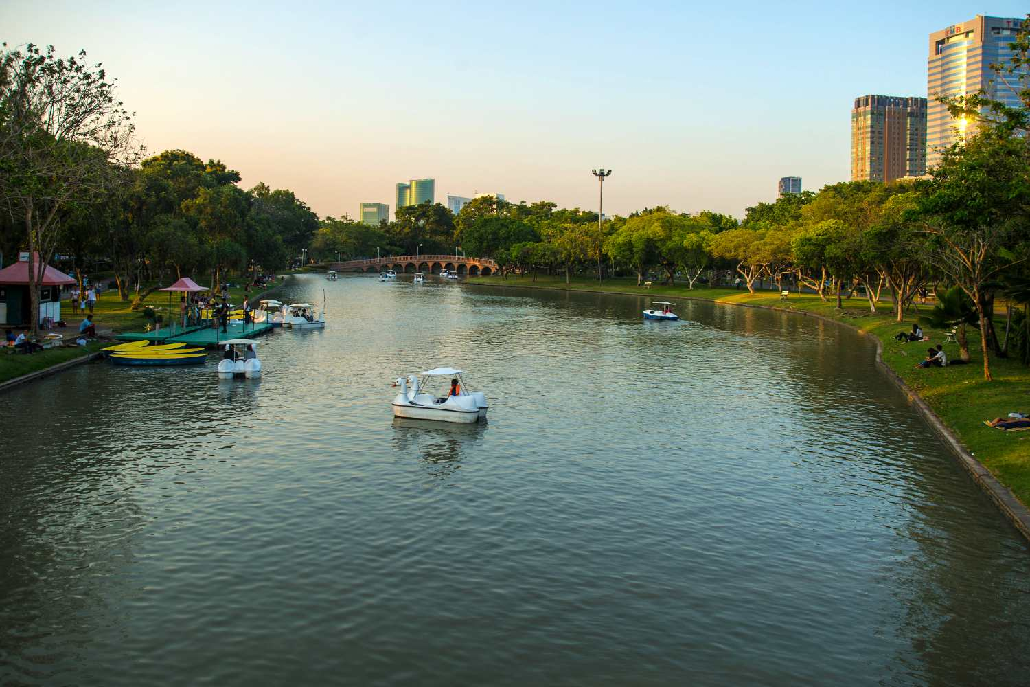 Swan boat in the water of the Chatuchak Park in Bangkok