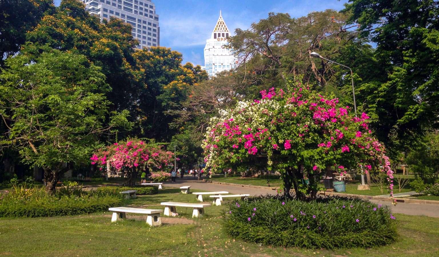 Mooie natuur in het Lumphini Park in Bangkok, Thailand