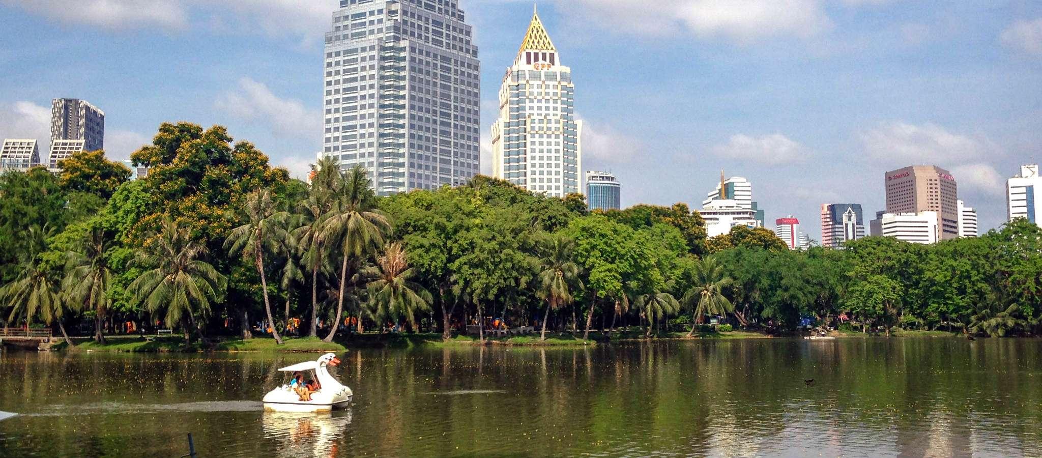 Het meer en zwanenbood in het Lumphini Park in Bangkok, Thailand