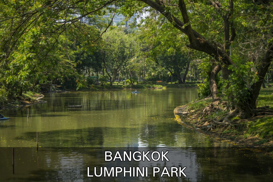 Leer hier verder voor alle informatie over het Lumphini Park in Bangkok, Thailand