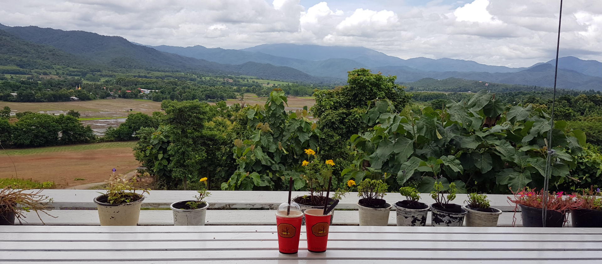 View from the terrace at Coffee in Love in Pai, Thailand