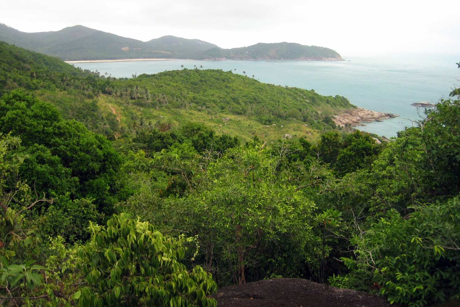 The jungle at Bottle Beach on Koh Phangan seen from the viewpoint