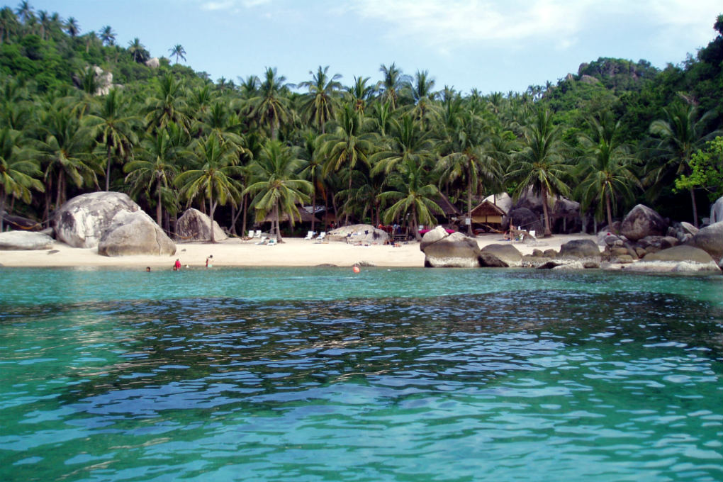 Uizticht on the palm trees and white beach of the small Jansom Bay on Koh Tao in Thailand