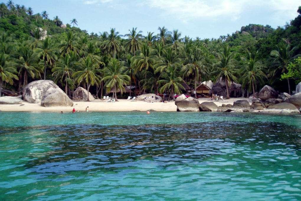 Uizticht op de palmbomen en het witte strand van Jansom Bay op Koh Tao in Thailand