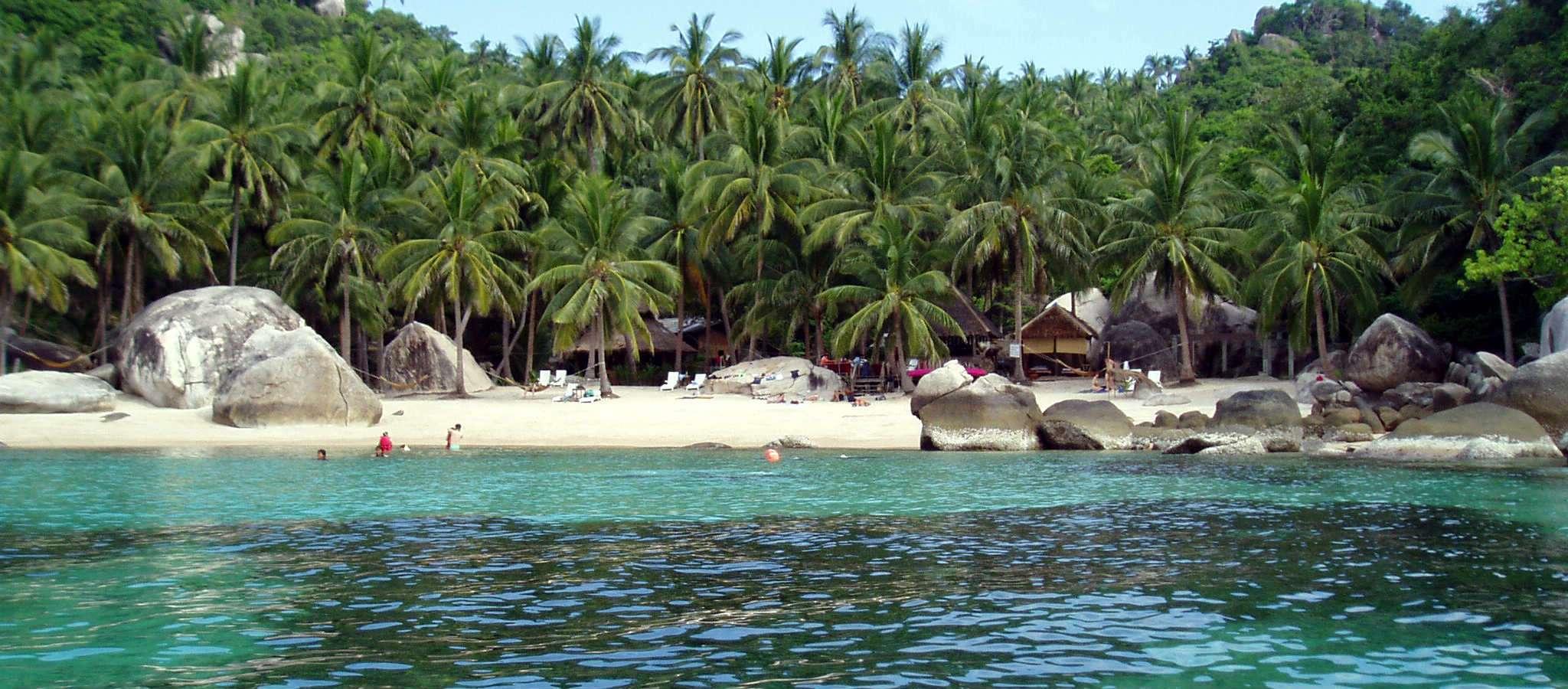 Uizticht op de palmbomen en het witte strand van de kleine baai Jansom Bay op Koh Tao in Thailand