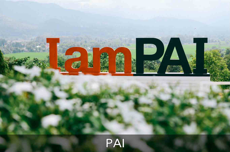 Klik hier als je alles wilt lezen over Pai
