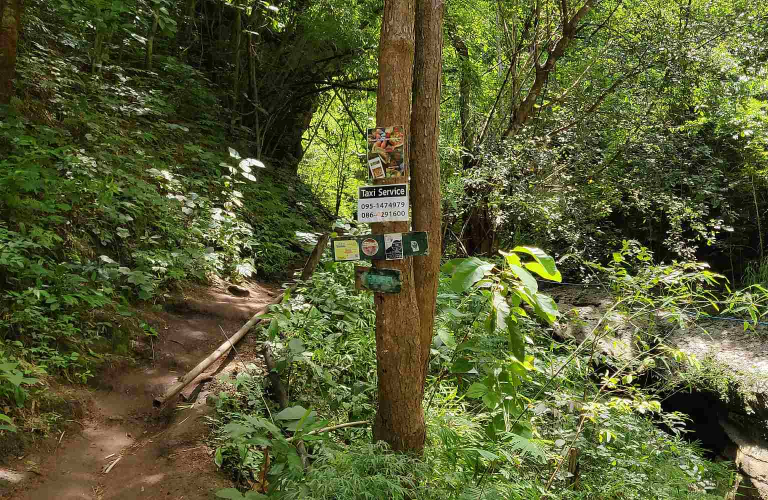 Walking path to the Pam Bok waterfall in Pai