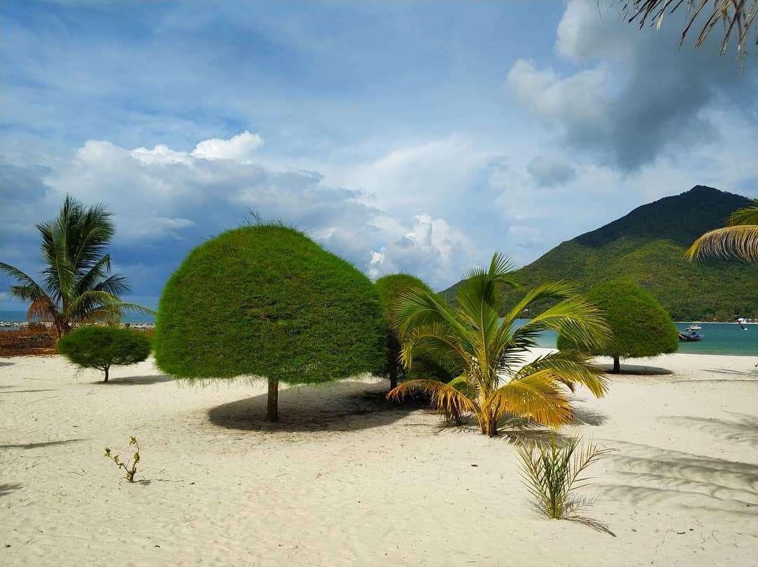 Het Strand Van Malibu Beach Op Koh Phangan Met Mooi Fijn Wit Zand En Kleine Boompjes In Rare Vormen