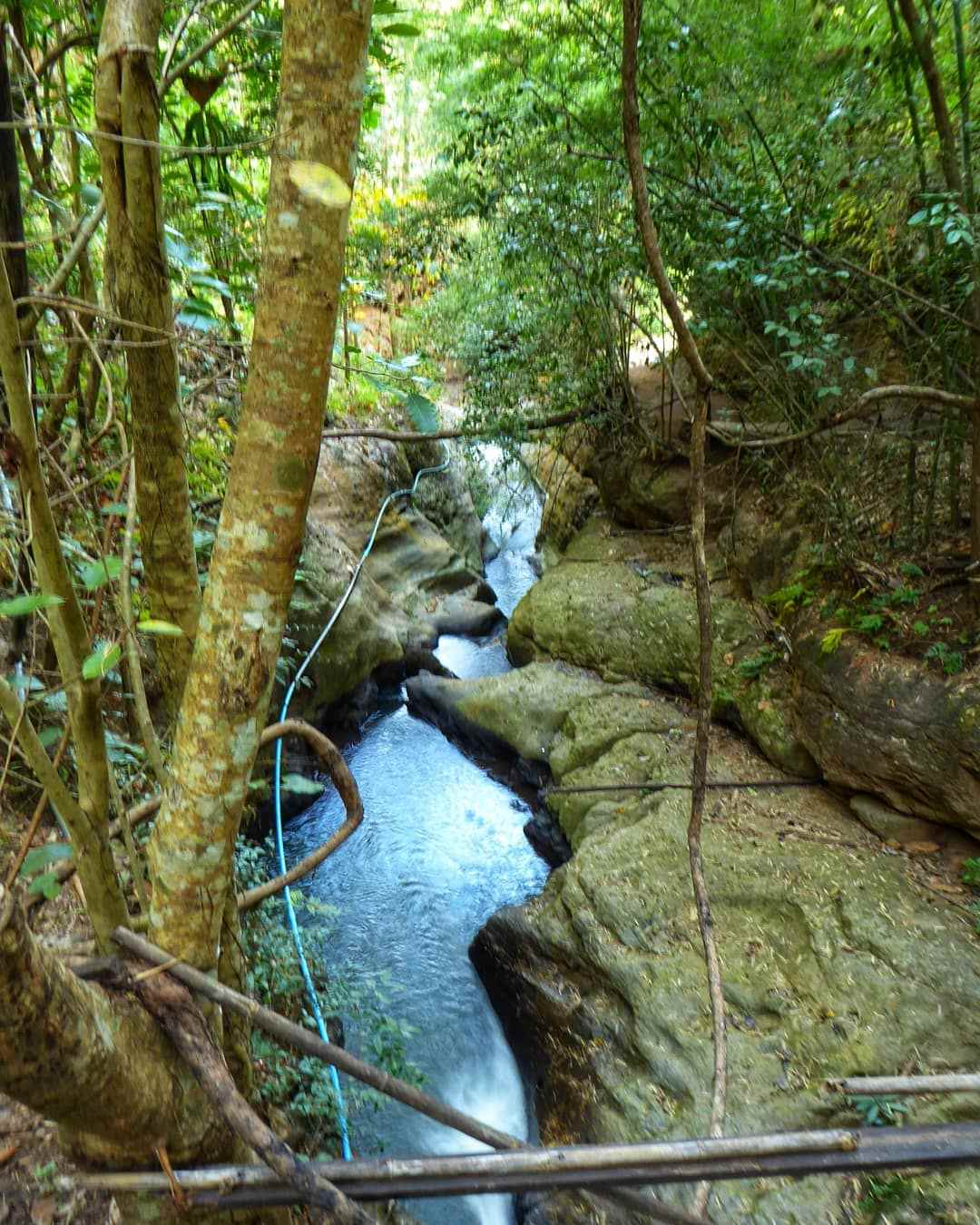 A water stream from the Pam Bok Waterfall in Pai