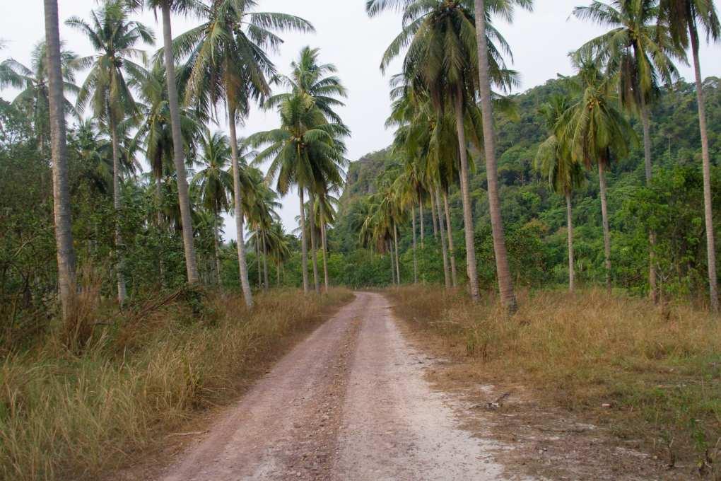 Een weg op het eiland Koh Tarutao