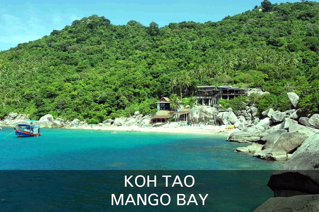 Lees Over Mango Bay Op Koh Tao In Thailand