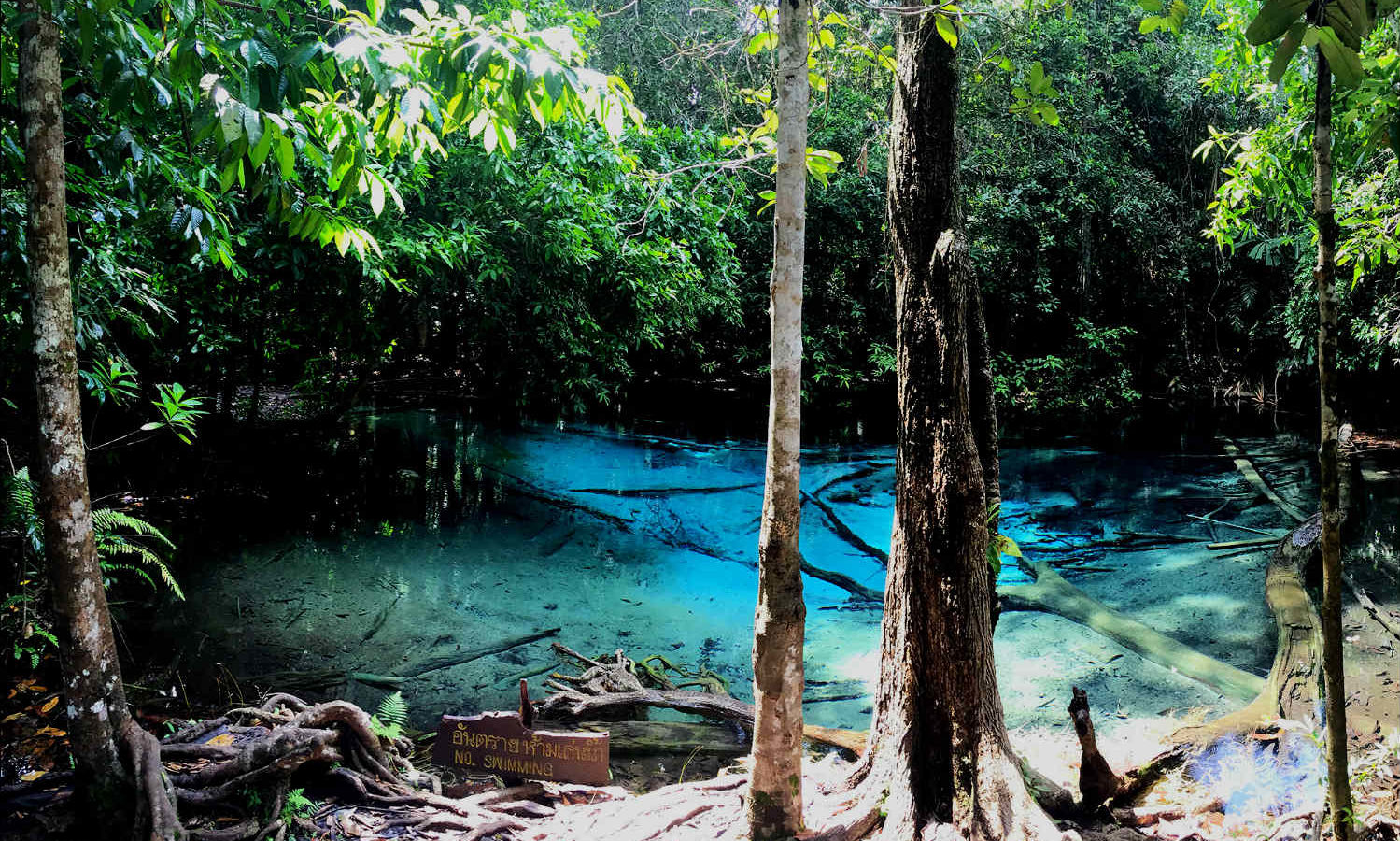 Bleu Pool, blauw meertje welke is omgeven door weelderige jungle