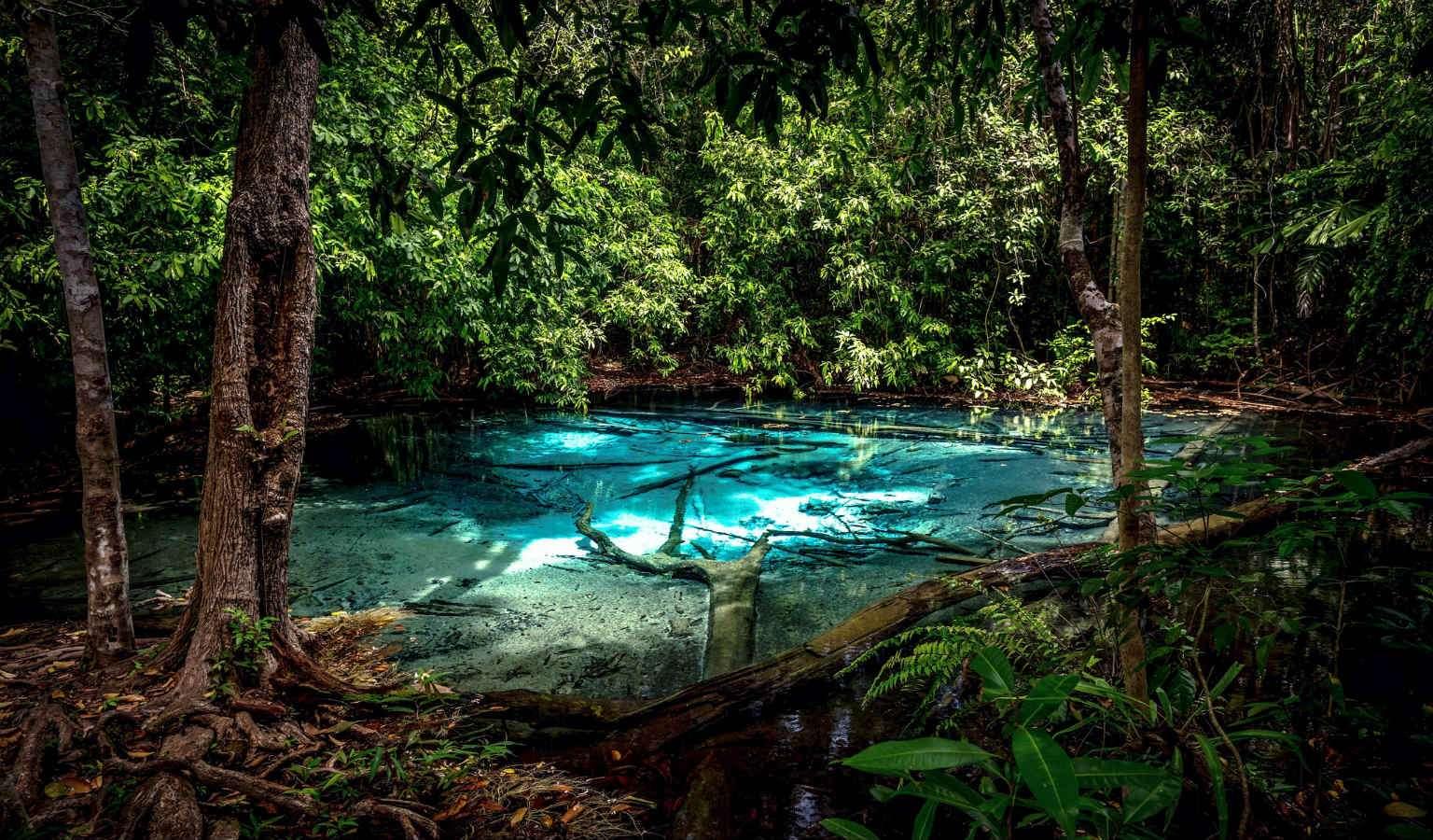 Blue Pool, helder blauw water midden in de jungle, Krabi