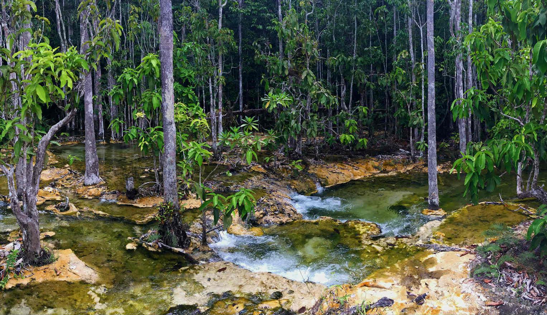 Waterstroompjes onderweg naar Emerald Pool