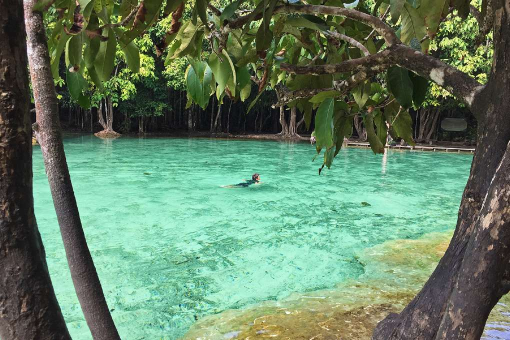 De Emerald Pool vlakbij Krabi Town