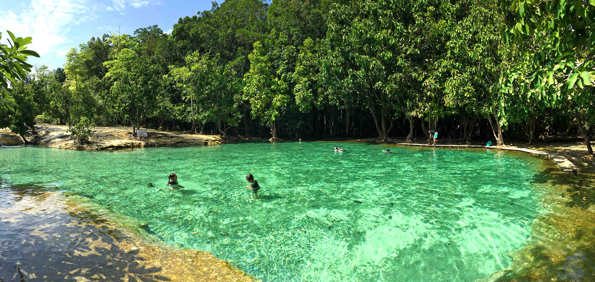 2 people in the water of the Emerald Pool surrounded by jungle