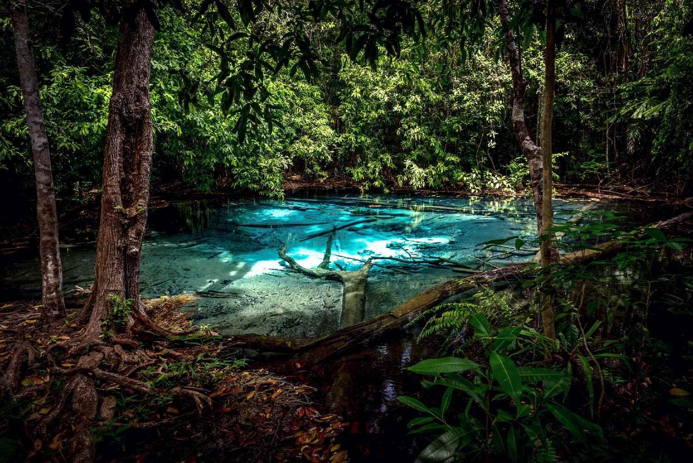 Helderblauwe water van de Blue Pool omringd met jungle, Krabi