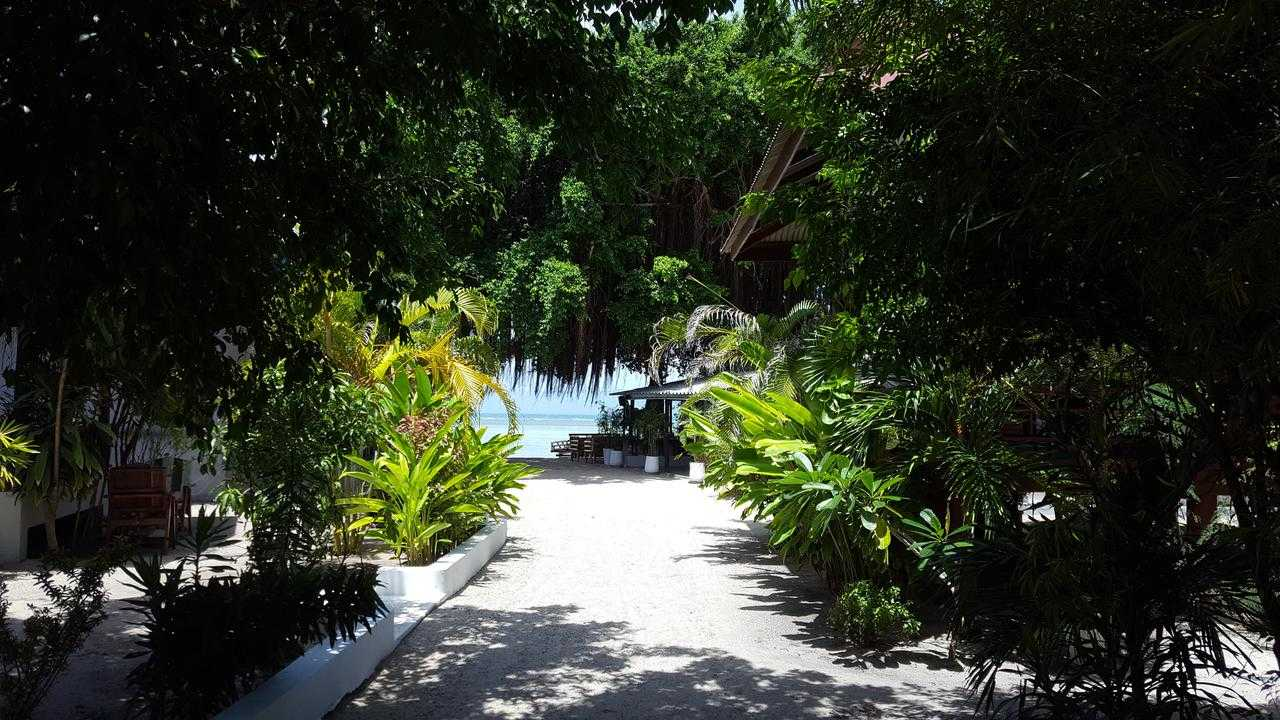 Path to the beach of Thong Sala through the green at Mikasa Beach House