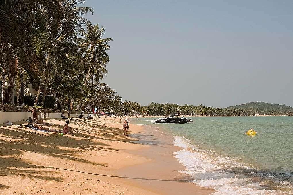 Maenam Beach op Samui, goudgeel langgerekt strand omzoomd met palmbomen.