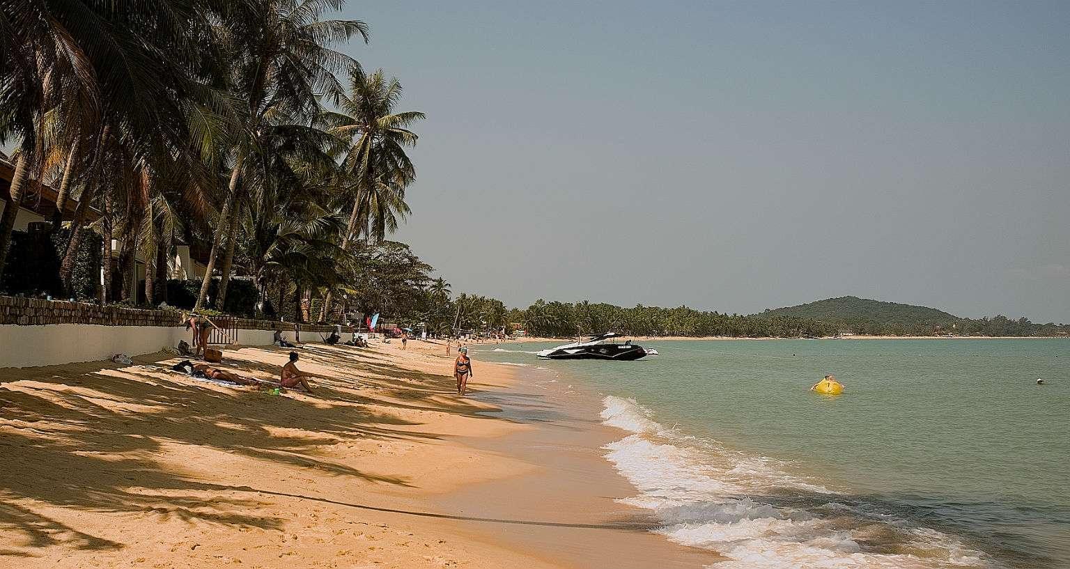Maenam Beach, goudgeel langgerekt strand omzoomd met palmbomen.