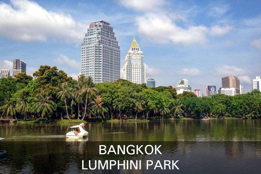 Lees Hier Alles Over Het Lumphini Park In Bangkok, Thailand.