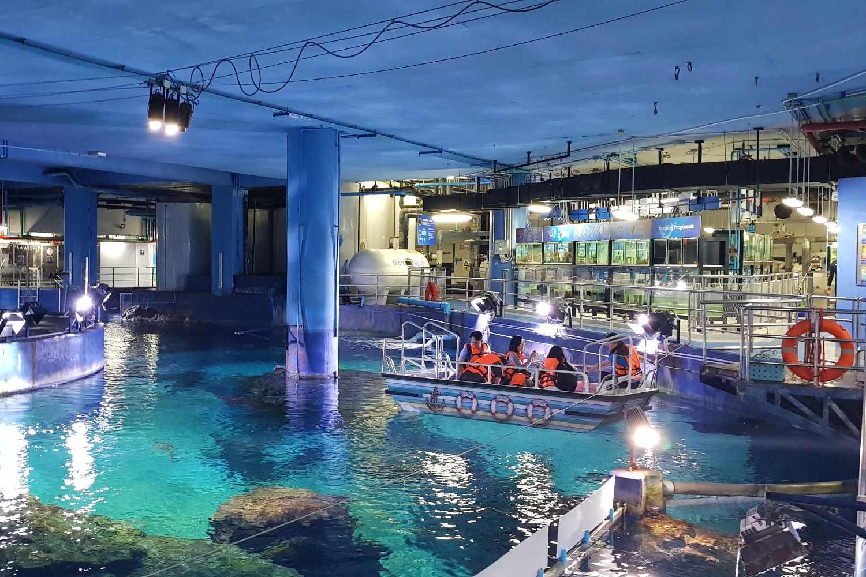 Glasbodemboot in Sea Life Bangkok Ocean World