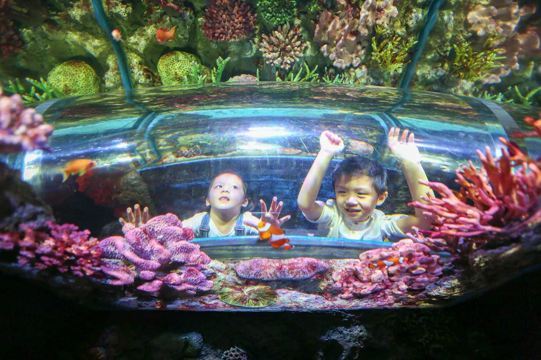 kinderen kijken in een aquarium van Sea Life Bangkok