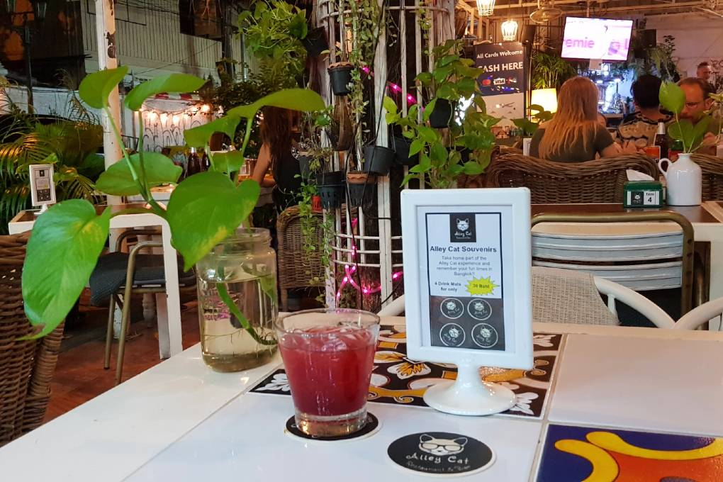 Drinks at Alley Cat Restaurant in Bar on Rambuttri Alley in Bangkok