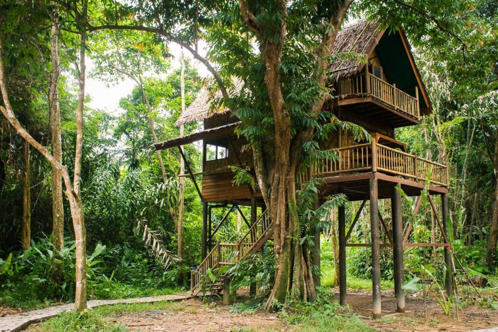 Een boomhut op het terrein van Our Jungle Camp