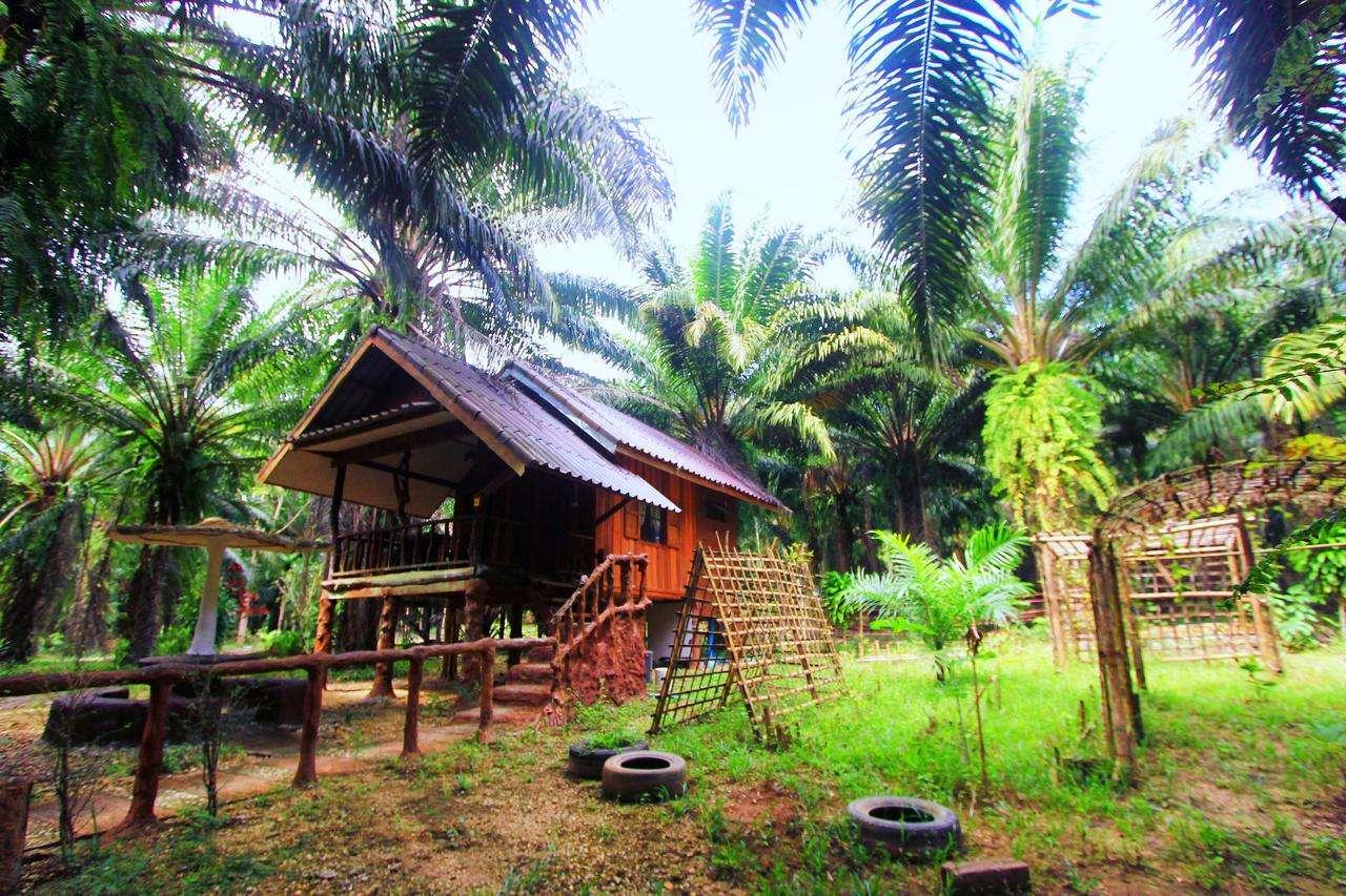Een bungalow met daaromheen allemaal palmbomen in het Khao Sok Palmview Resort - een van de beste hotels in Khao Sok, Thailand