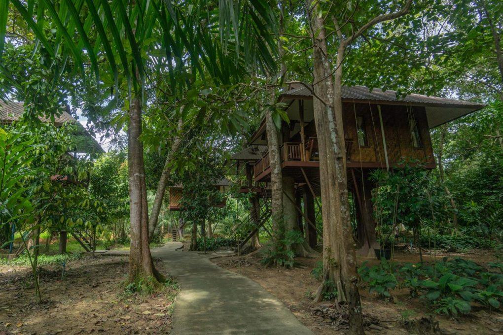 De tuin van het Baan Khao Sok Resort met een aantal boomhutten