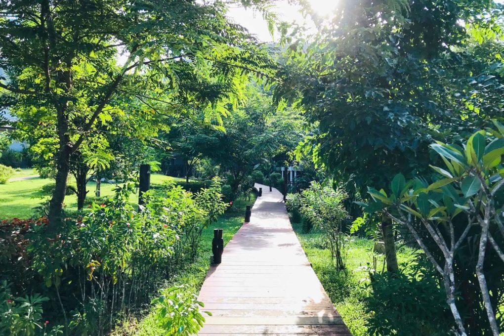 Een wandelpad van het Montania Lifestyle Hotel in Khao Sok