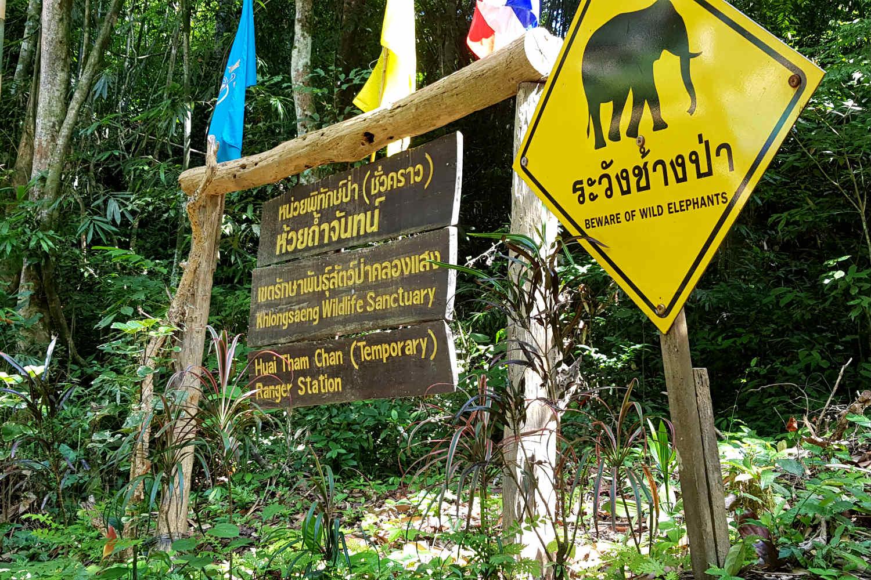 Cheow Lan Lake. Yellow warning sign beware of wild elephants.