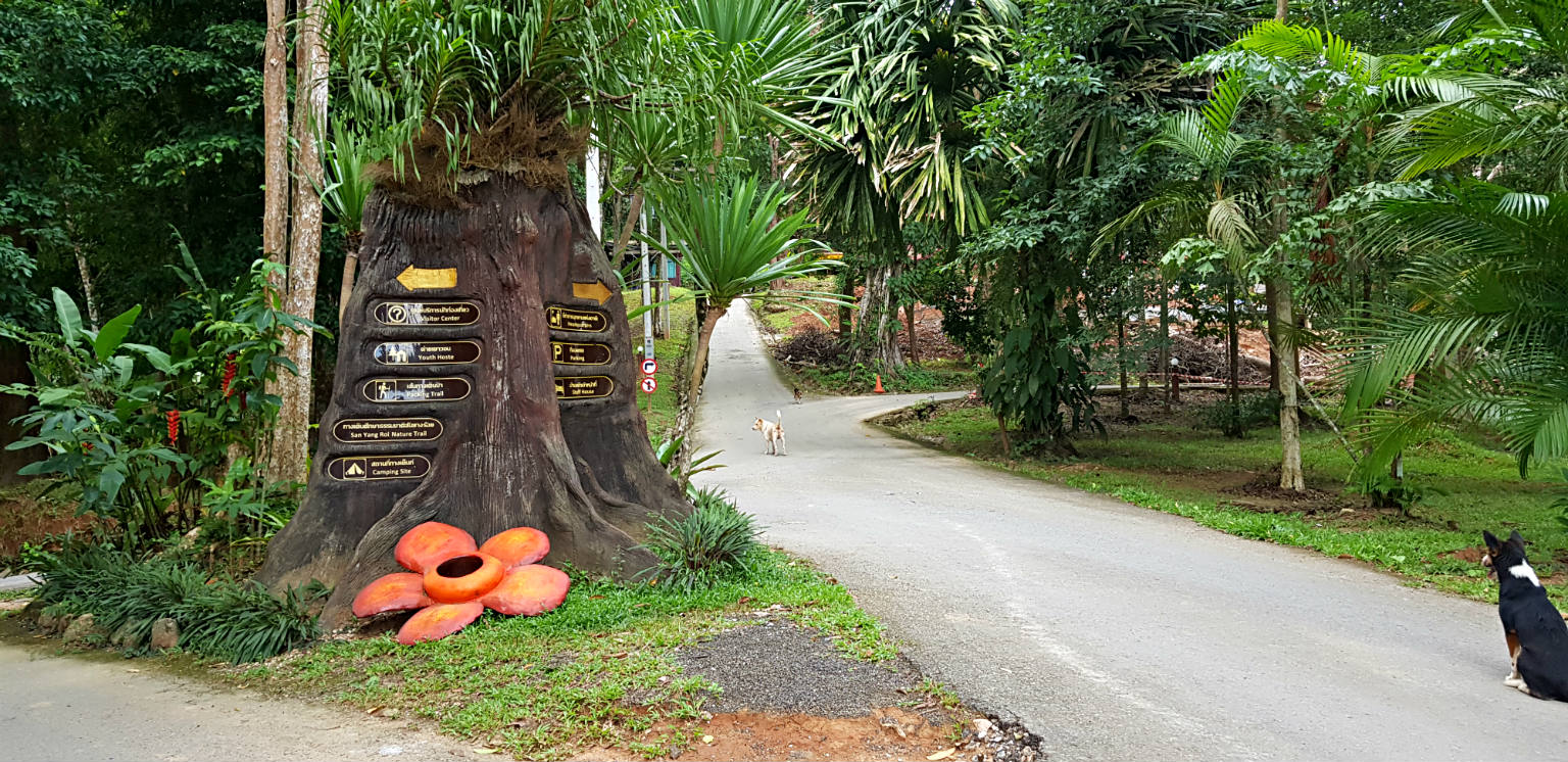 Entrance with Rafflesia Flower statue at Khao Sok