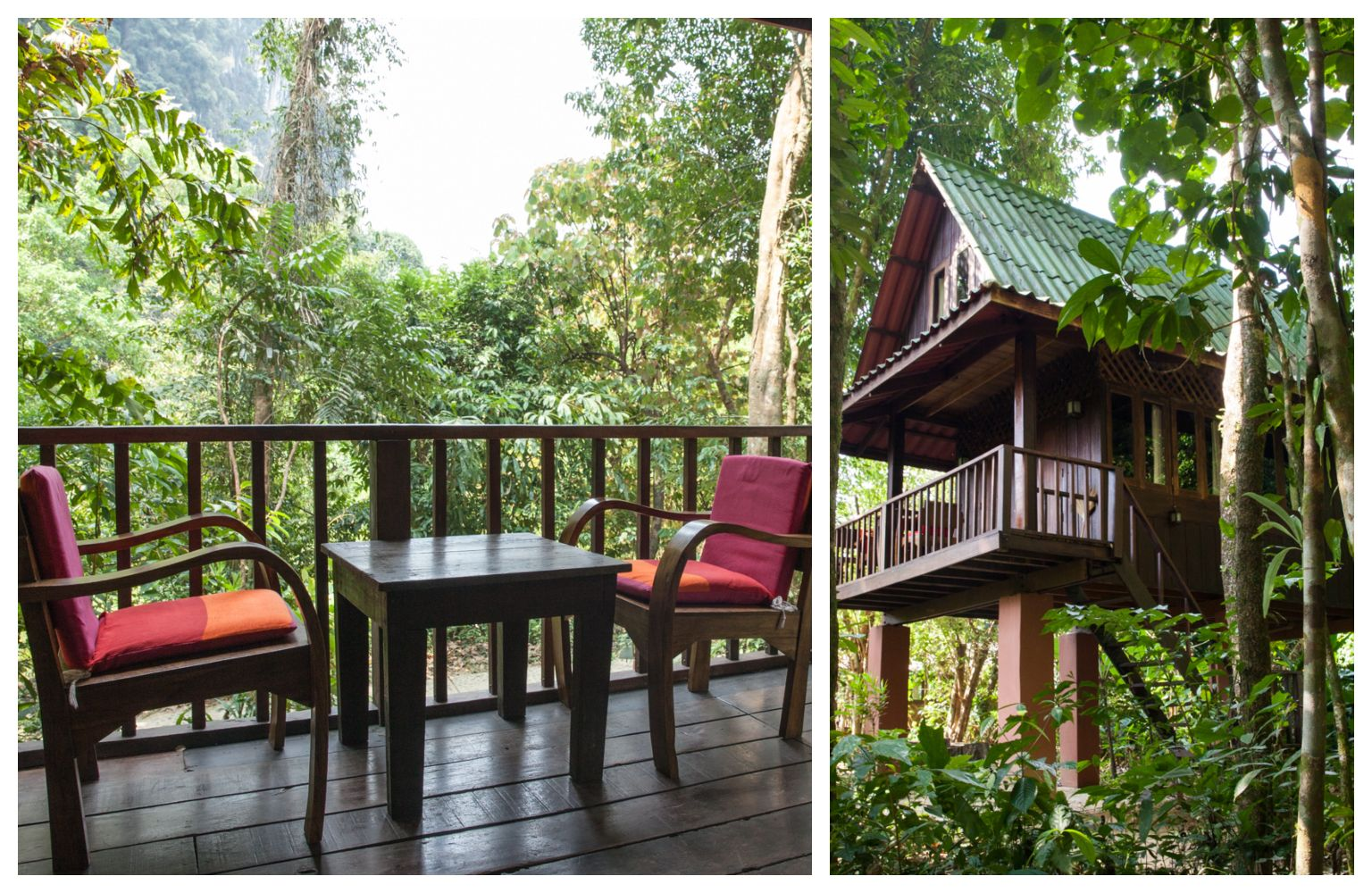 Tree house in the jungle, stay overnight in Khao Sok National Park