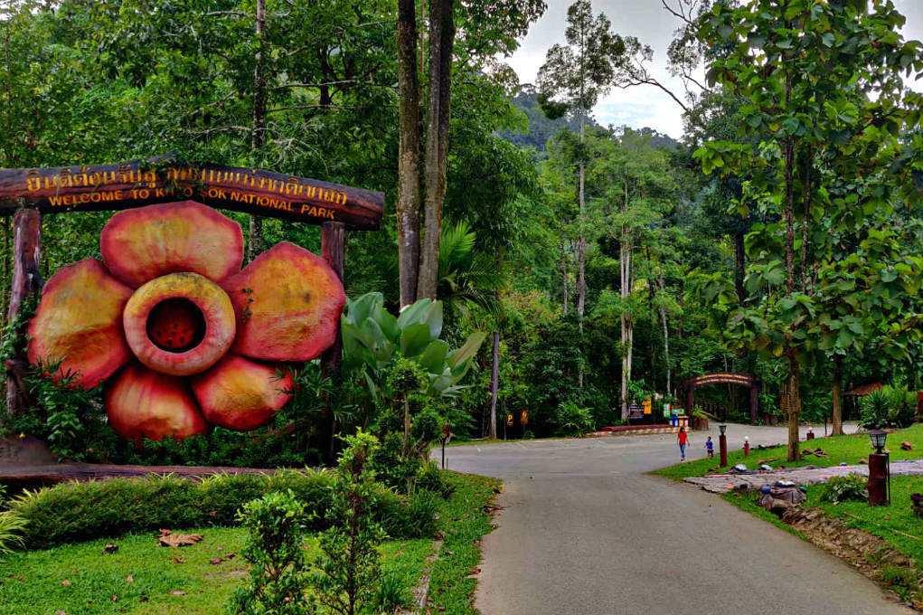 Rafflesia flower statue at Entrance of Khao Sok National Park