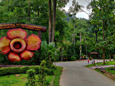 Leukste Tours In Khao Sok National Park