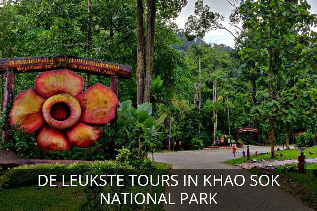 Foto Rafflesia bloem met link naar artikel met de leukste tours in Khao Sok National Park