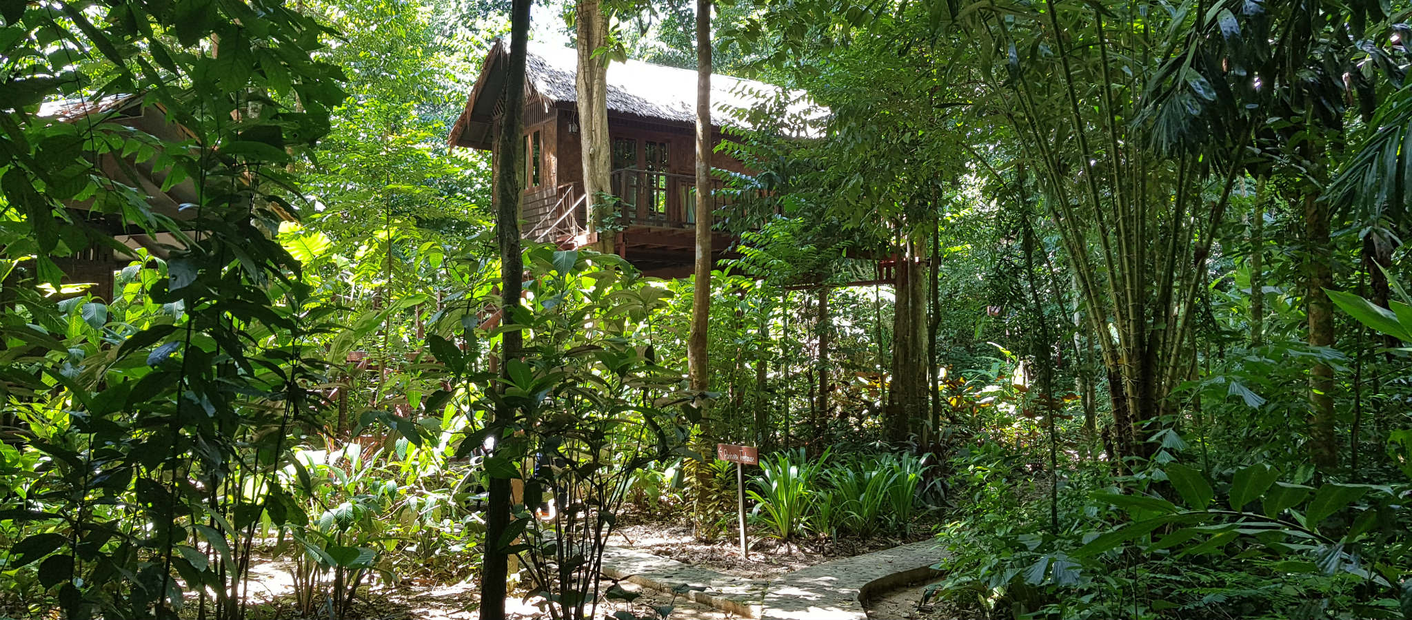 Tree house of Our Jungle House in Khao Sok, Thailand