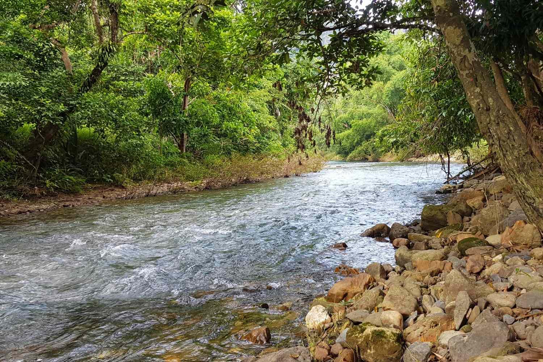 De Sok rivier die grenst aan het Morning Mist Resort in Khao Sok, Thailand