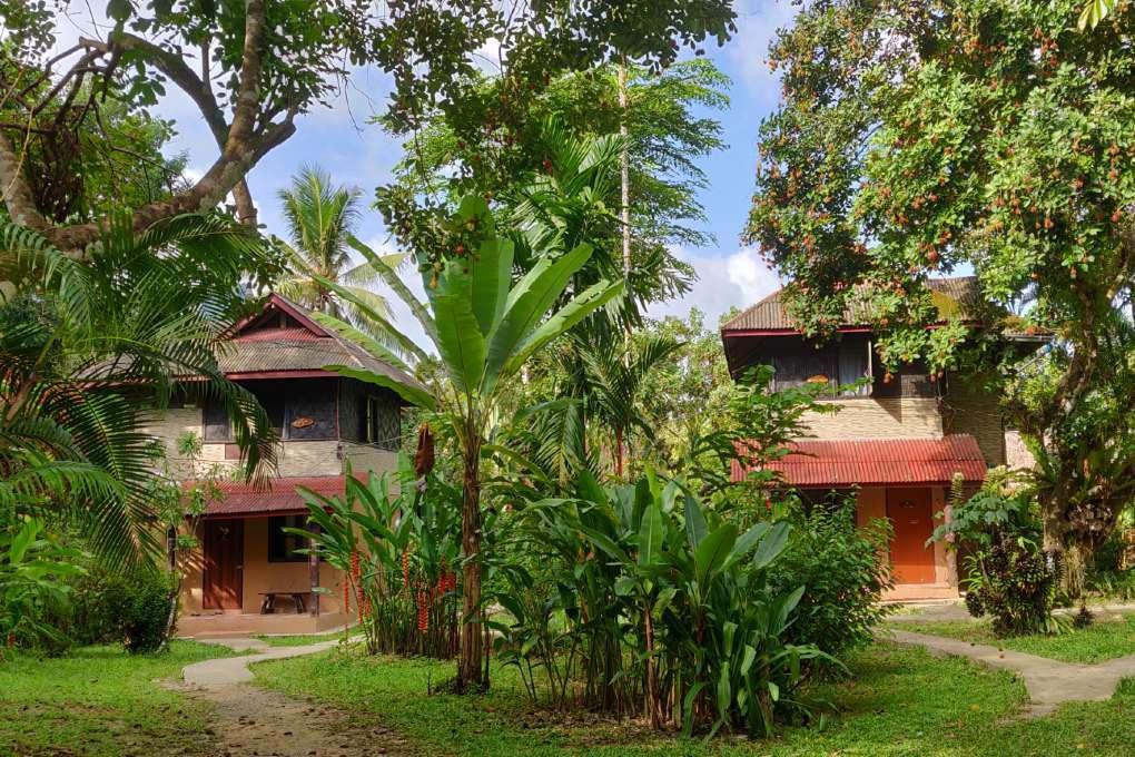 Het terrein van Khao Sok Morning Mist Resort