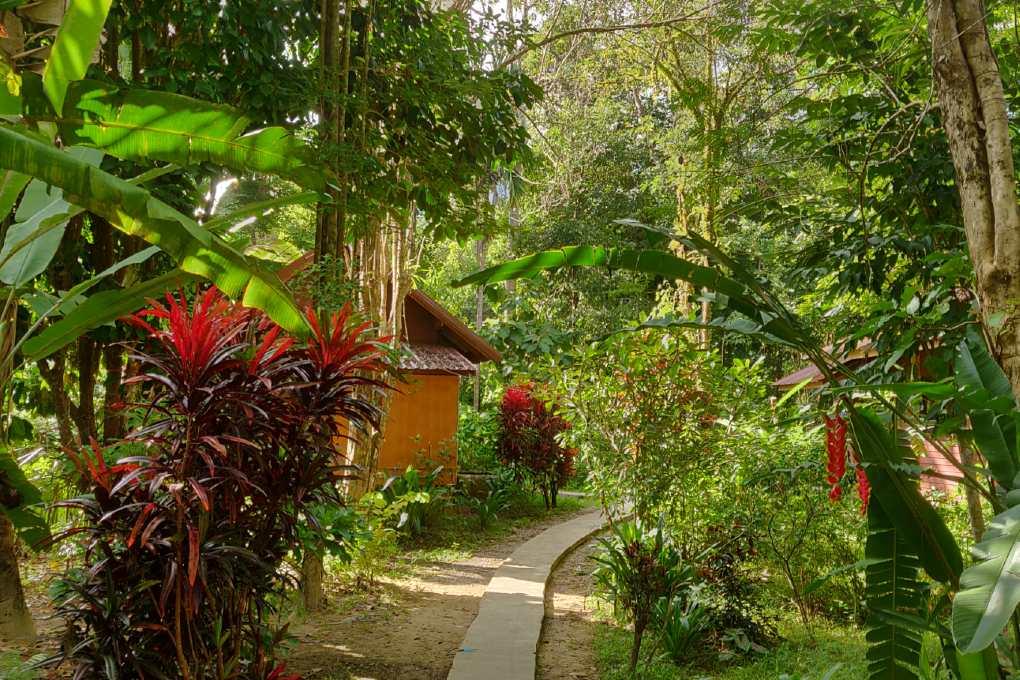 De tuin van het Khao Sok Morning Mist Resort