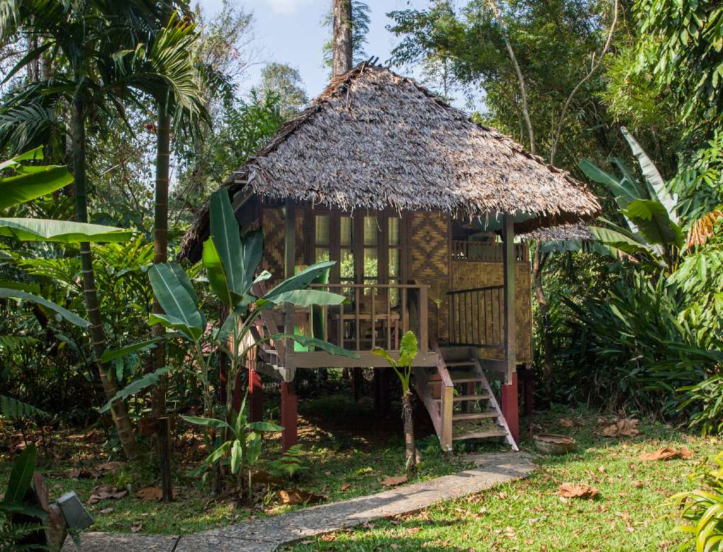 Our Jungle House bungalow in Khao Sok
