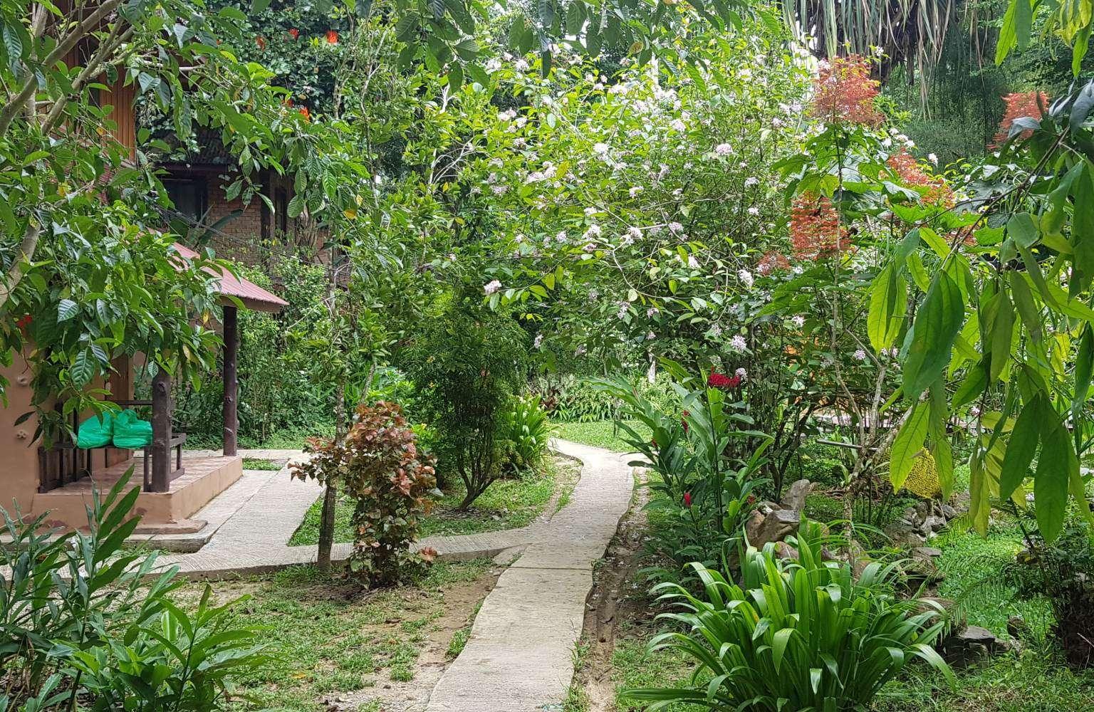 Uitzicht op de tropische tuin van het Morning Mist Resort in Khao Sok, Thailand