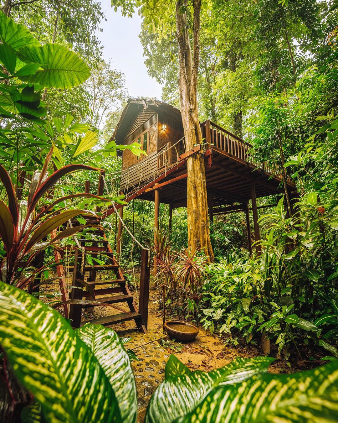 Een boomhut op het terrein van Our Jungle House in Khao Sok