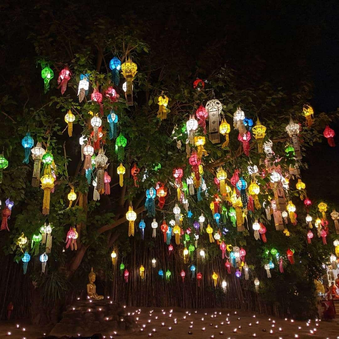Allemaal gekleurd lantaarns in een boom tijdens het Yee Peng Festival 2019