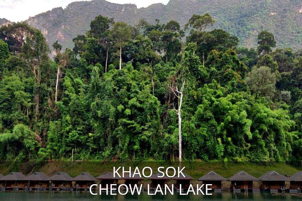 klik hier voor het artikel over Cheow met link, klik hier voor alle informatie over Cheow Lan Lake in Khao Sok