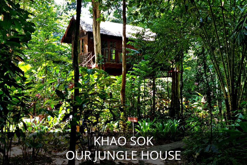 Foto Van Boomhut Met Link, Klik Hier Voor Informatie Over Our Jungle House In Khao Sok