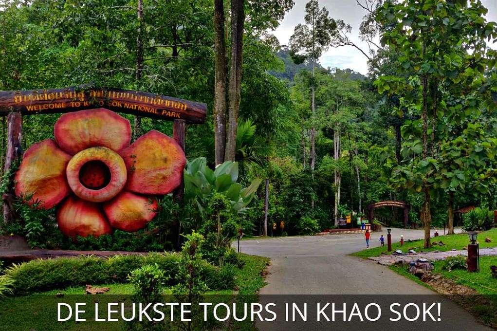 Rafflesia bloem, foto met link, klik hier voor de leukste tours in Khao Sok National Park